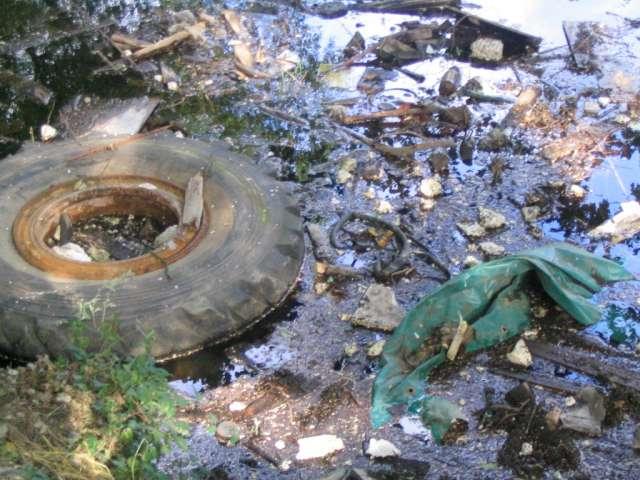 تلوث البيئة كبيرة التلوث 2011