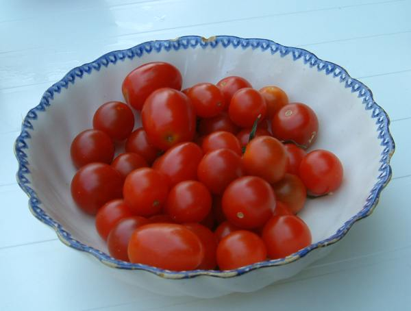 http://photo.ortho.free.fr/images/fruits_legumes/tomates_cerises.jpg